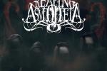REAPING ASMODEIA